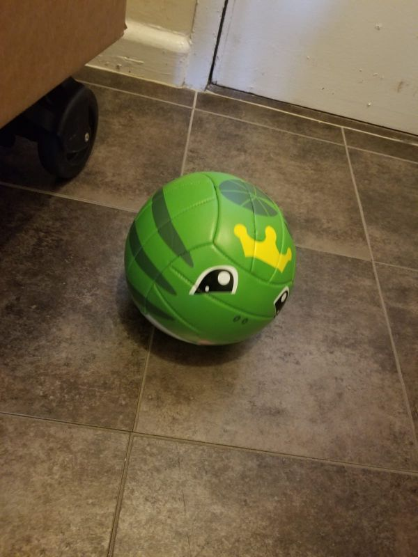 Selling toddler play items in great condition (between $5-10)