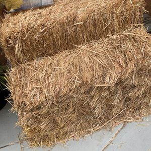 Hay for Sale in Corona, CA