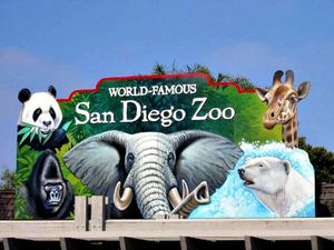 Zoo for Sale in San Diego, CA