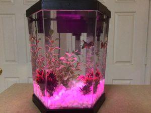 $25 - Mini Aquarium with Rotating Colored Led lights for Sale in Atlanta, GA