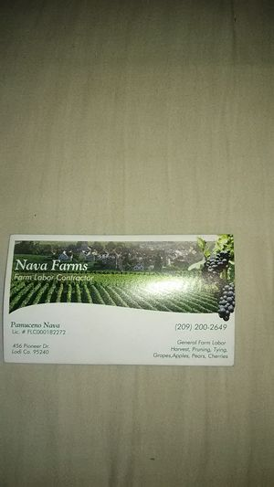 Nava Farms, we want to work with u for Sale in Lodi, CA