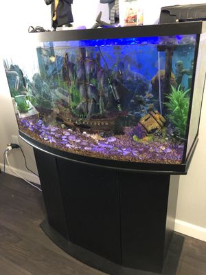 4 months old 46 gallon Aquarium Include all the accessories water heater filter just buy the fish and filled with water for Sale in Denver, CO