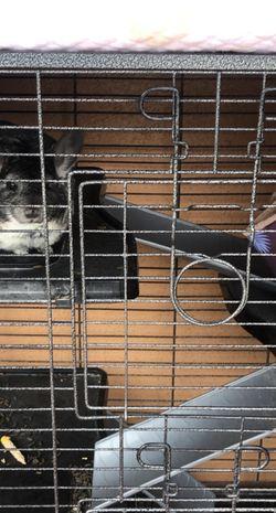 Chinchilla Cage for Sale in Lawndale,  CA