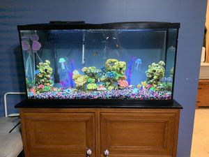 75 Gal Fish Tank- Fish included- Filter included- Decor included for Sale in MERRIONETT PK, IL