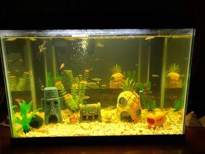 20 gallon tall fish tank for Sale in Orlando, FL