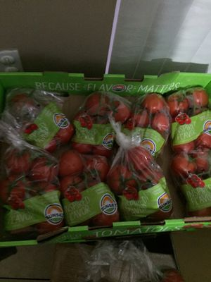 Full box of tomatoes fresh tomatoes are only $16 for all tomatoes for Sale in Pembroke Pines, FL