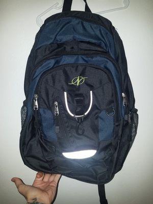 Norditrack Back pack for Sale in Sanger, CA