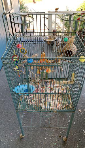 Bird cage for Sale in Escondido, CA