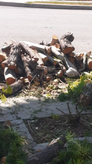 FREE WOOD..IN CITY OF.. DOWNEY ,CA for Sale in Compton, CA