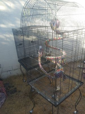 Large bird cages for Sale in Phoenix, AZ