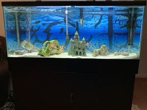 FISH TANK for Sale in Glyndon, MD