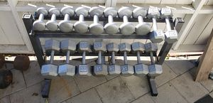 5lbs to 40lbs Fixed Dumbbells and Dumbbell Rack for Sale in San Jose, CA