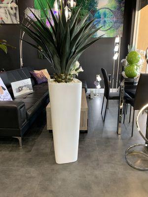 Plant decor for Sale in Miami, FL