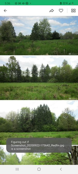 20 acres for sale $165k for Sale in Auburn, WA