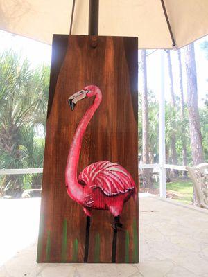Bird for Sale in Port St. Lucie, FL