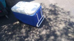 Blue igloo cooler. 36 qrts for Sale in Mesa, AZ