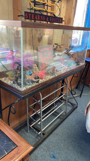 50 gallon fish tank for Sale in Bellevue, IL