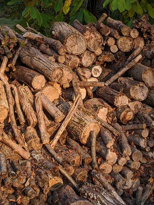 Seasoned firewood for Sale in Noblesville, IN