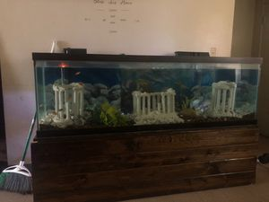Fish tank for Sale in Peoria, IL