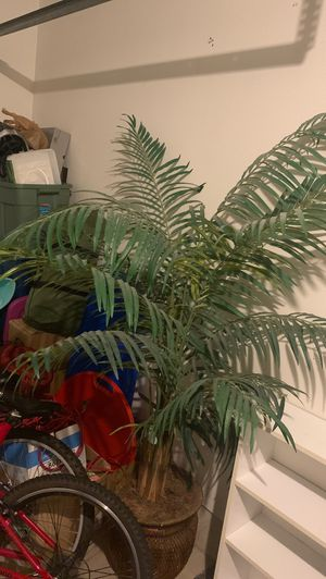 Fake plant palm tree for Sale in Milwaukie, OR