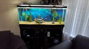 Aquarium 75 gallon with LED light and cabinet for Sale in Sacramento, CA