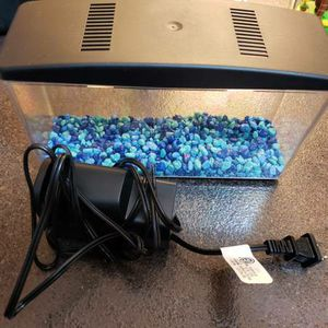 Betta or Fish Tank Supplies for Sale in Westminster, CO