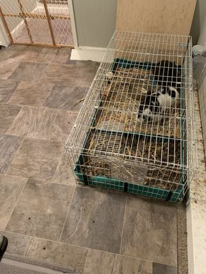 Rabbit cage for Sale in Tacoma, WA