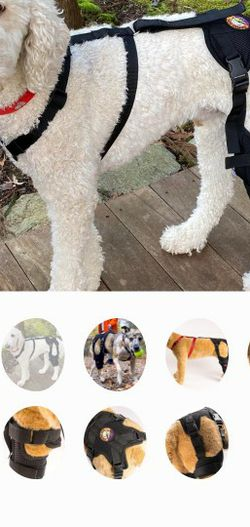 Dog ACL Knee Brace - Right Leg for Sale in Bothell,  WA
