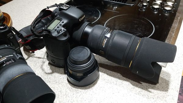 Canon 7D with 70-200mm and 50mm l lenses