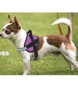 Dog Harness for Small Dogs No Pull No Choke,Reflective Adjustable Straps for Sale in Rancho Cucamonga,  CA