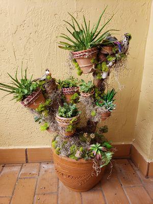 Succulent planter for Sale in Miami, FL