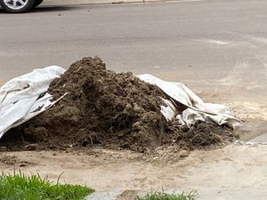 Fill dirt for free if your in need take what u need massage me I will give u address for Sale in Thornton, CO