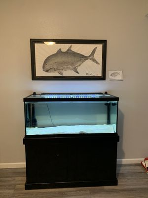 Fish Tank 75 gallon for Sale in Mililani, HI