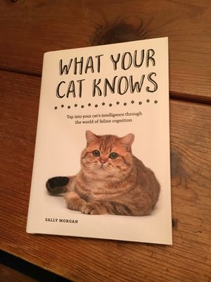 What Your Cat Knows book for Sale in Washington, DC