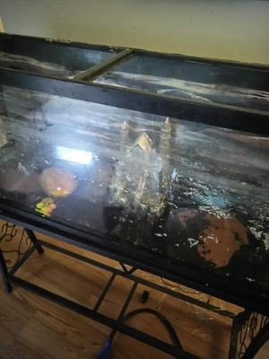 55 gallon aquarium for sale must go today 100 dollars. Includes heater pumps filter fish food and lighted hoods. Stand included for Sale in Nashville, TN