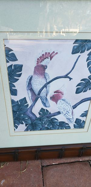 tropical framed Cockatoos Picture for Sale in NEW PRT RCHY, FL