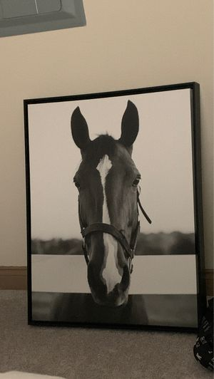 Horse portrait for Sale in Irvine, CA
