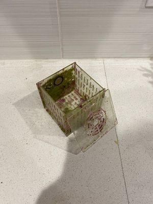 Acrylic Coral Box for Sale in Phoenix, AZ