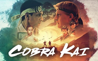 Cobra Kai Season 1-3 USB Digital Media for Sale in Long Beach,  CA