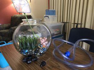 Small aquarium for Sale in Everett, WA