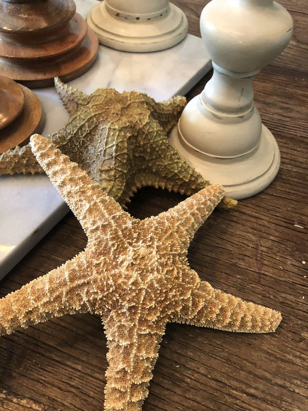 Pottery Barn Home Decor - candle holders starfish summer decorations