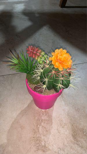 small fake succulent and cactus plant for Sale in Miami, FL