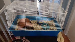 Hamster/Guinea pig cage for Sale in Tallahassee, FL
