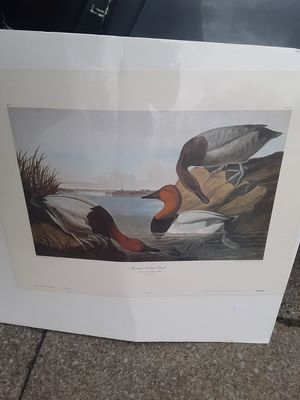 John James Audubon Prints for Sale in Henderson, KY