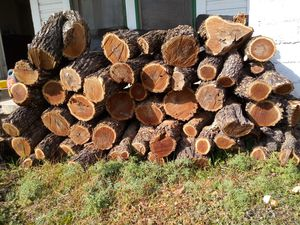Firewood for sale pure mesquite for Sale in San Angelo, TX
