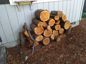 Free firewood for Sale in Tigard, OR