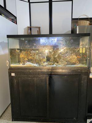 75g reef saltwater fish tank/live rock for Sale in Auburn, WA