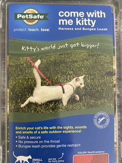 Cat Harness and Bungess Leash for Sale in Aliquippa,  PA