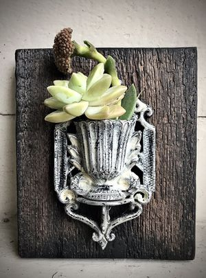 Vintage wall art w/ succulents for Sale in San Diego, CA