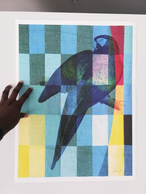 New Art Print - Checkered Parrot (18*24) for Sale in Washington, DC